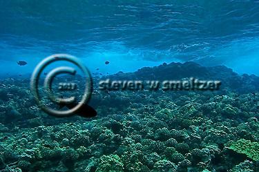 Surge zone Molokini crater (Steven Smeltzer)