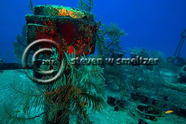 On Deck, Oro Verde shipwreck, Grand Cayman (Steven Smeltzer)